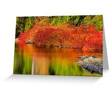 Vine Maples Greeting Card
