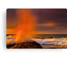 """A Splash Of Orange"" Canvas Print"