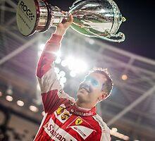 Sebastian Vettel, Race of Champions Champion by gregtoth85