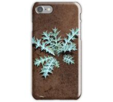 Small plant  iPhone Case/Skin