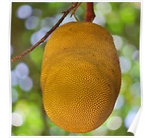 Jackfruit Poster