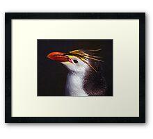 Royal Penguin Portrait Framed Print