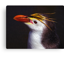 Royal Penguin Portrait Canvas Print