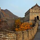 THE Great Wall by Julie Moore
