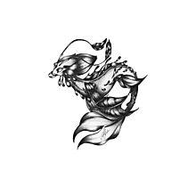 Sea-dragon Male Photographic Print