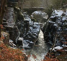 The Hermitage, Dunkeld by Chippe