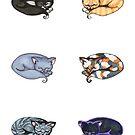 Watercolor Kitties by Amy-Elyse Neer