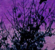 Raven Sentinel Purple Sky Sticker