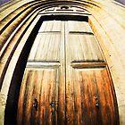 Old, Spanish Wooden Door by marina63