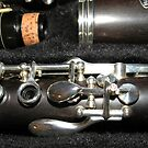 My Hanson T6 Clarinet by BlueMoonRose
