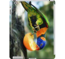 Rainbow Lorikeet II [Print & iPad Case] iPad Case/Skin