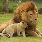 Father and Son by AngelaHumphries