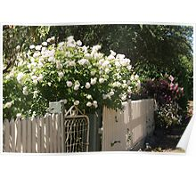 Cottage fence Poster