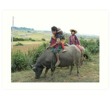 Children on buffalo, Shan State, Myanmar Art Print