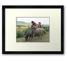 Children on buffalo, Shan State, Myanmar Framed Print