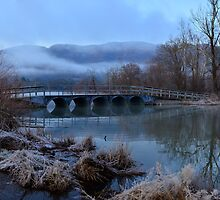 Cold Foggy Morning at Cove Lake by Jimmy Phillips