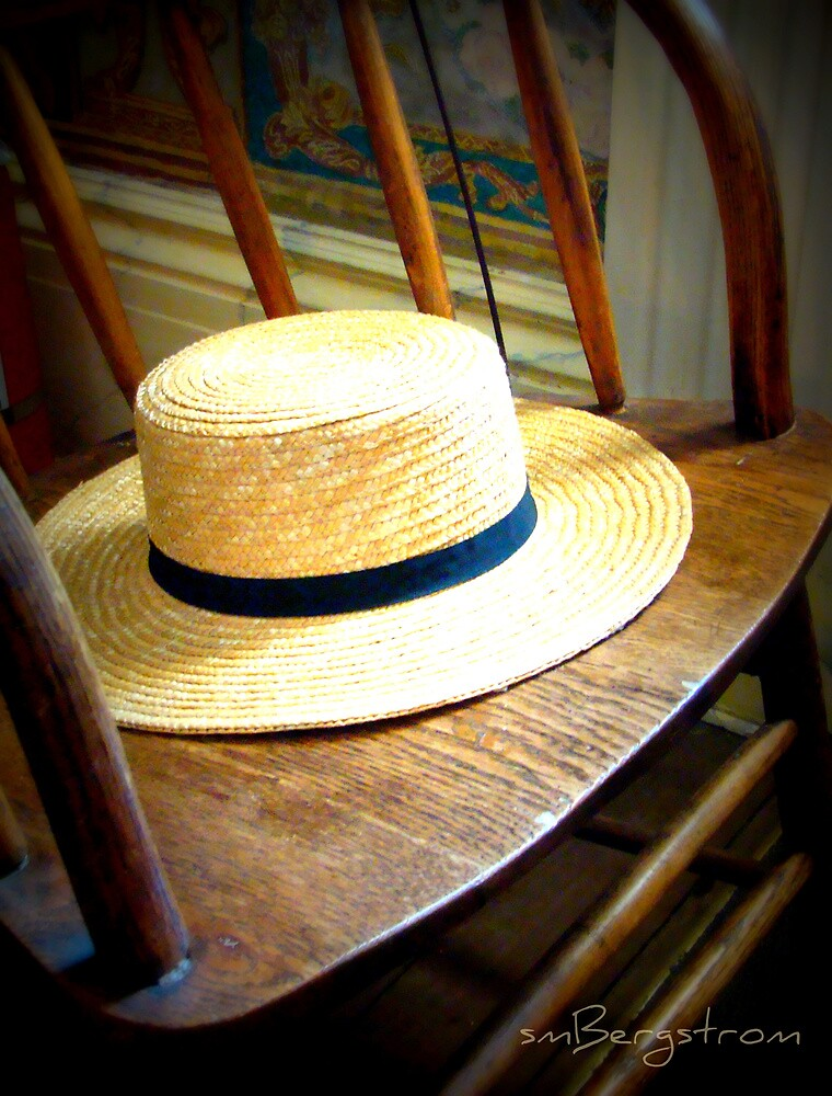 Don't Forget Your Hat by Susan Bergstrom