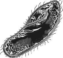Paramecium aka Terror Cell by sensameleon