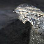 Ice crystal by fedda95