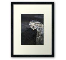 Ice crystal Framed Print