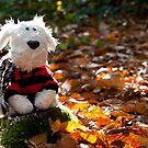 Mr Autumn by twinnieE