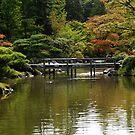 Fall in Japanese Garden, Seattle by Olga Zvereva
