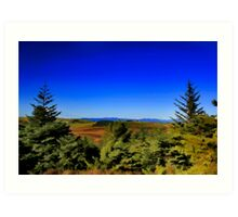 THE GREEN FOREST  Art Print