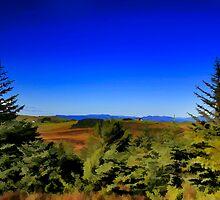 THE GREEN FOREST  by fedda95