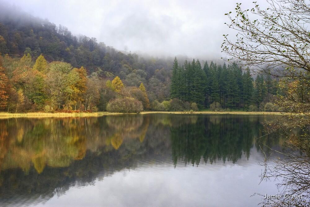Yew Tree Tarn In Autumn by Jamie  Green