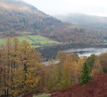 Rydal Water Panorama by Nick Atkin