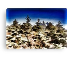 Dark sky & green nature Canvas Print