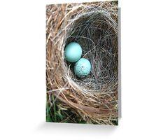 Blue Eggs Greeting Card