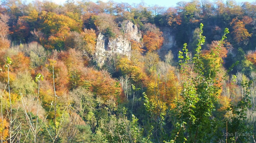 Symonds Yat Rock by John Evans