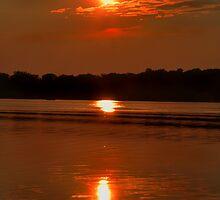3 Suns by Donald  Stewart