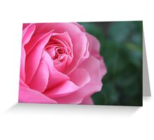 2012 Vitez Rosa Collection [02] Greeting Card