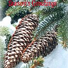Season's Greetings by Heather Crough