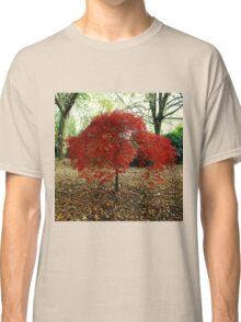 Red Leaved Tree Classic T-Shirt