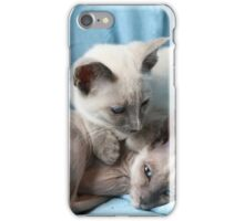 Kittens iPhone Case/Skin