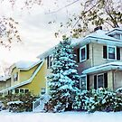 Steely Winter Sky by Susan Savad