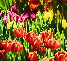 Coloured Tulips by Ray Warren