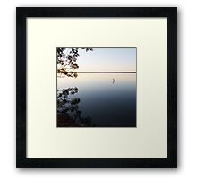 The Tranquil Pelican Framed Print