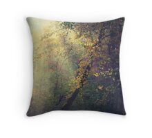 Dream a New Dream Throw Pillow