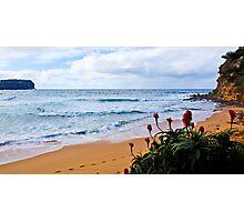 Beach Buds Photographic Print