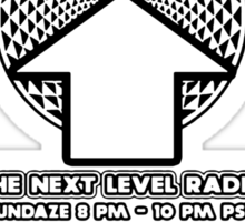 NOV 2012 THE NEXT LEVEL RADIO MERCH 11 Sticker