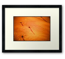 DESIGNS IN THE WHEAT FIELD Framed Print