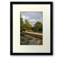 Elegant Garden Framed Print