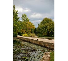 Elegant Garden Photographic Print