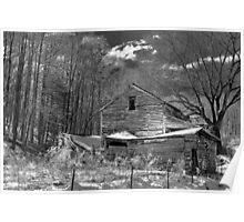 Black and White Georgia winter Poster