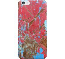 Paint iPhone Case/Skin