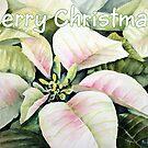 Christmas poinsettia by Bobbi Price